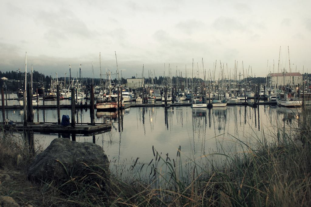 Docks of Coos Bay